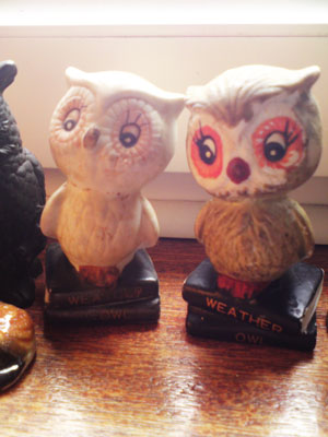 pair_of_owls